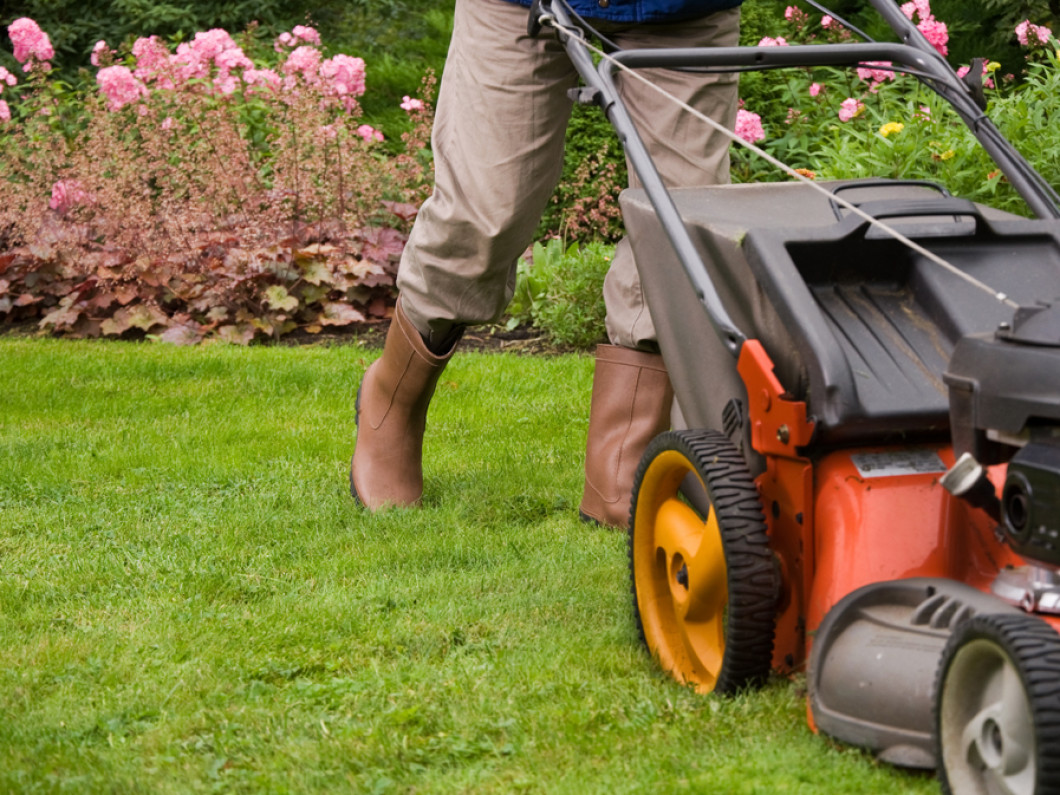 Lawn Care & Lawn Maintenance From a Local Landscaping Company